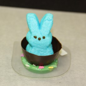 peep in grass mold still