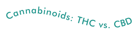 Cannabinoids THC vs. CBD
