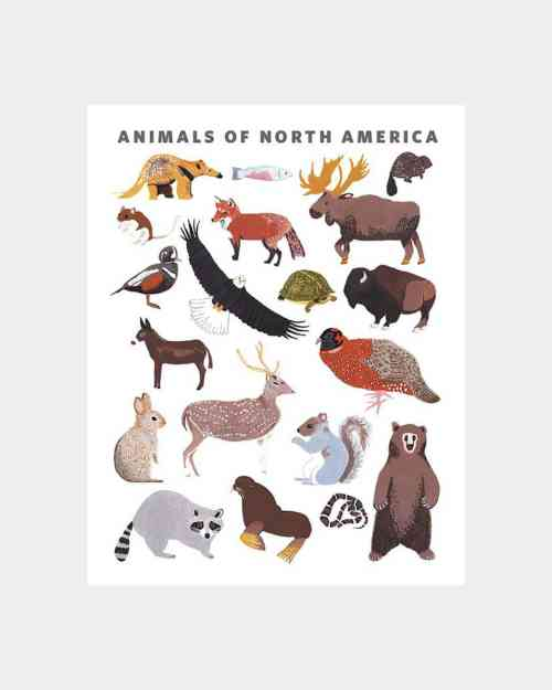 An art print with different animals found in north america printed on it