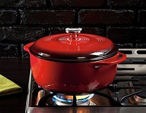 Imagine this beautiful Dutch Oven on your stove today!
