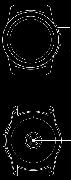 Line drawing of front and back view of Galaxy Watch small body section.