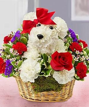 hoa tặng sinh nhật đẹp