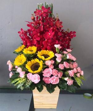 hoa sinh nhật hsn 93