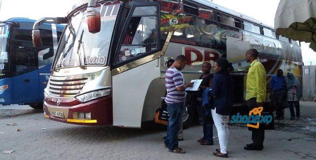 dreamline bus online booking one