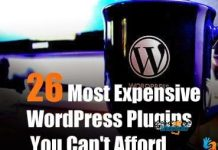 expensive wordpress plugins