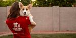 Fetch Dog Care
