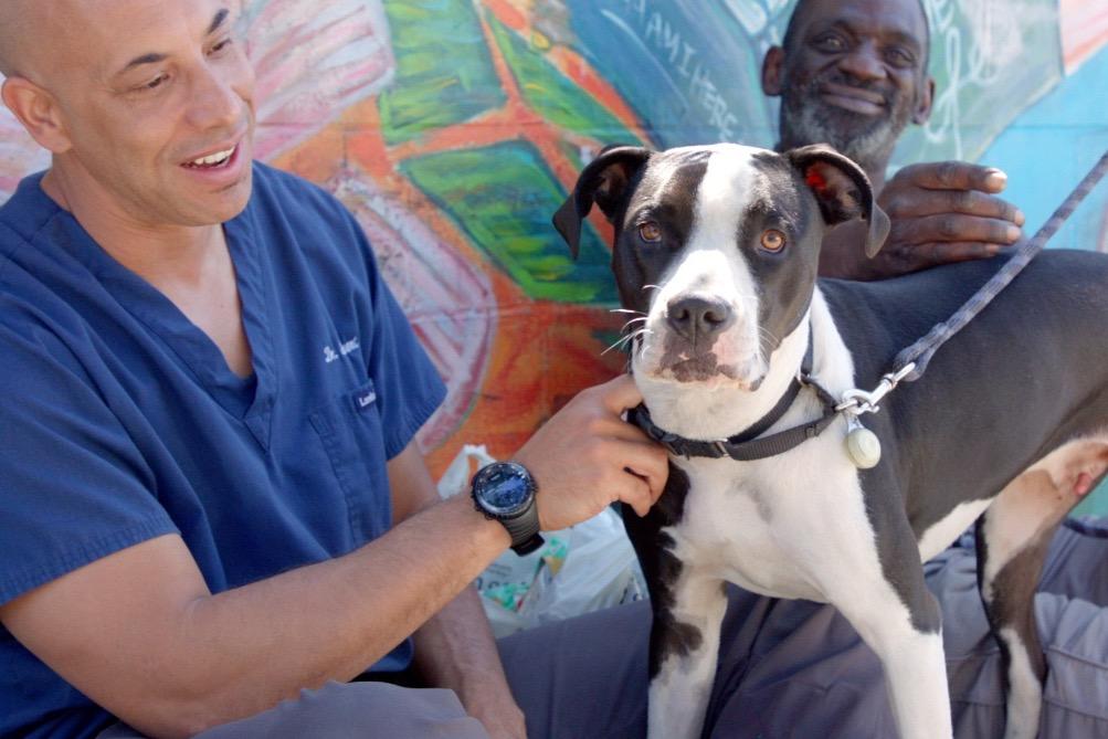 black veterinarian