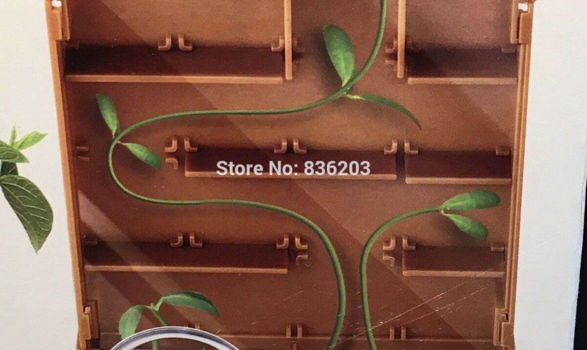 4M Grow a Maze Kit Simulation model skeleton Anatomical surgical Green Science Plant Biology Nature  condoms medical instruments