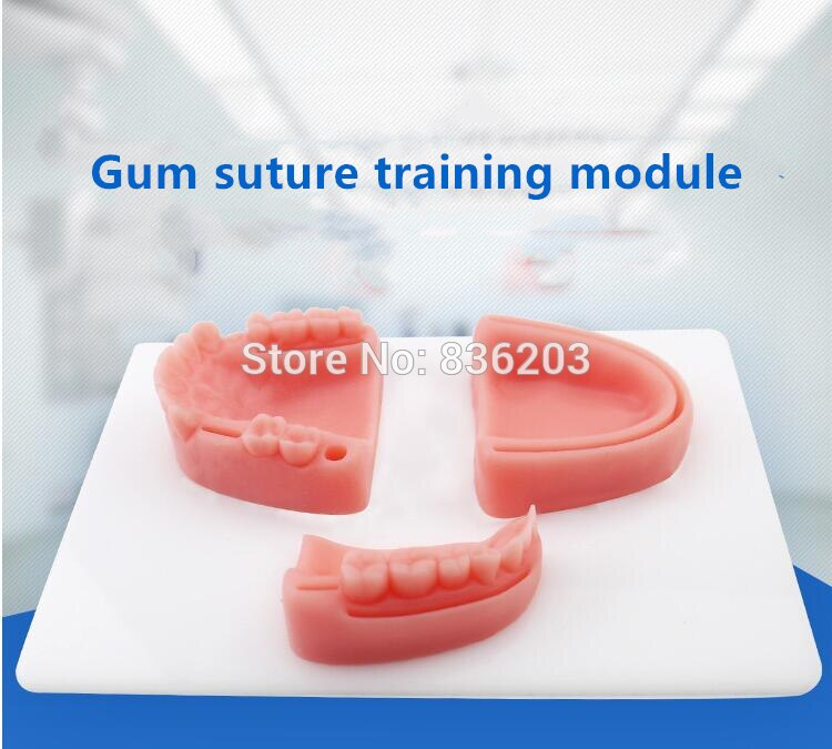 Oral Suture Training Imitation Oral Multiple Wound skeleton anatomical Skull Male member traumatic pistol medical instruments