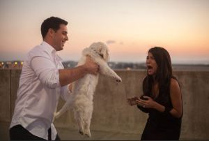 """And we quote: """"This girl got an Engagement Ring AND a Puppy..."""". Her fiancé has some serious game. Read all about it at HowHeAsked.com."""