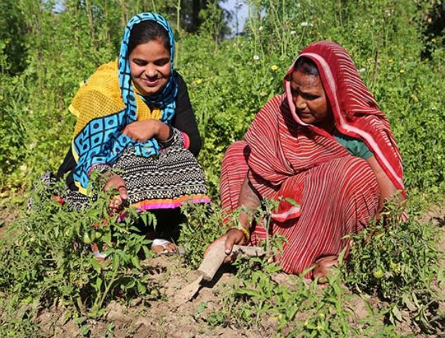 "Gardening is strenuous and often frustrating work but, even with the failures, it is a rewarding experience that all women should try. Photo via technoserve.org, ""Blog: Empowering Women to Reach Their Full Potential""."