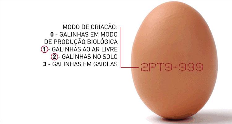 Lidl Portugal aboliu comercialização de ovos de galinhas criadas em gaiolas