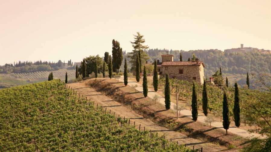Rượu vang Tuscany