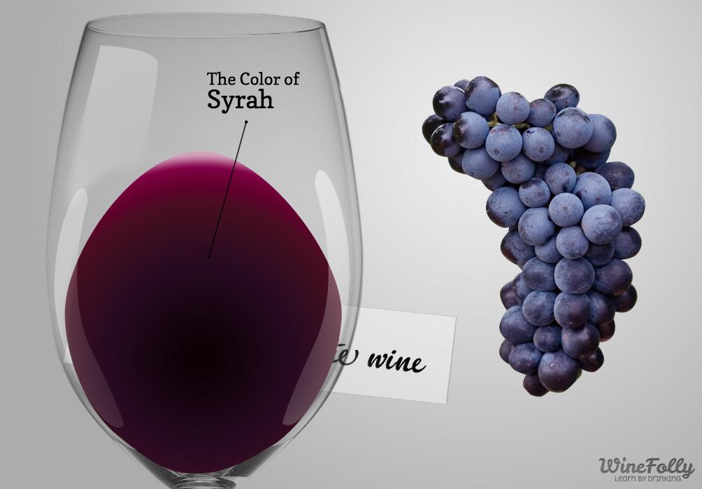 Syrah-wine-guide