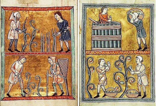 tranh vẽ lịch sử rượu vang pháp