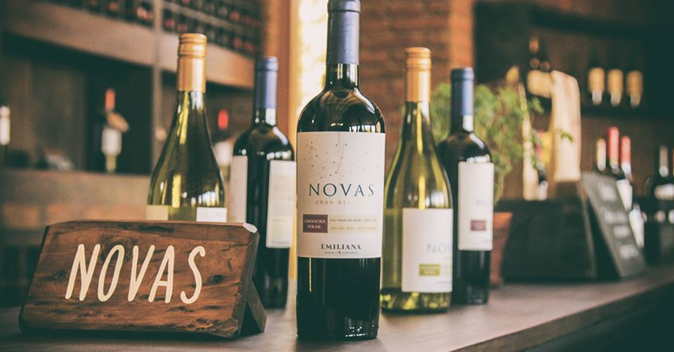 Nhà nhập khẩu rượu vang chile novas tại Bình Dương giá tốt nhất