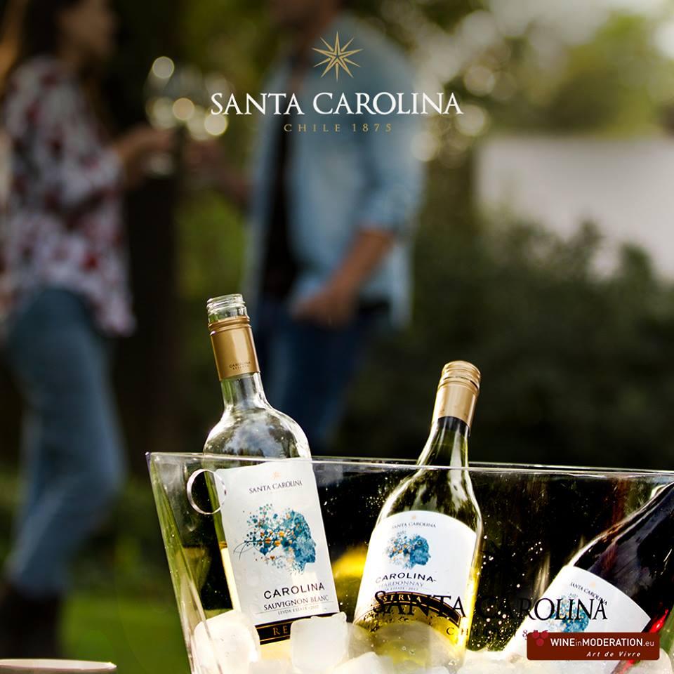 Nhà cung cấp rượu vang santa carolina reserva chardonnay tại Bạc Liêu giá rẻ