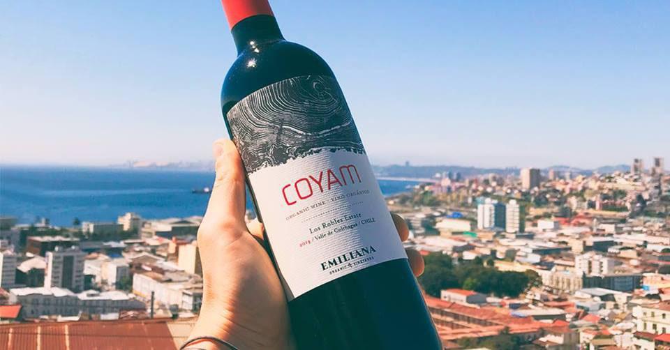 Phân phối rượu vang Chile Emiliana Coyam tại Long An giá tốt nhất