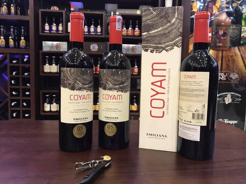 Phân phối rượu vang Chile Emiliana Coyam tại Hà Nội giá tốt nhất
