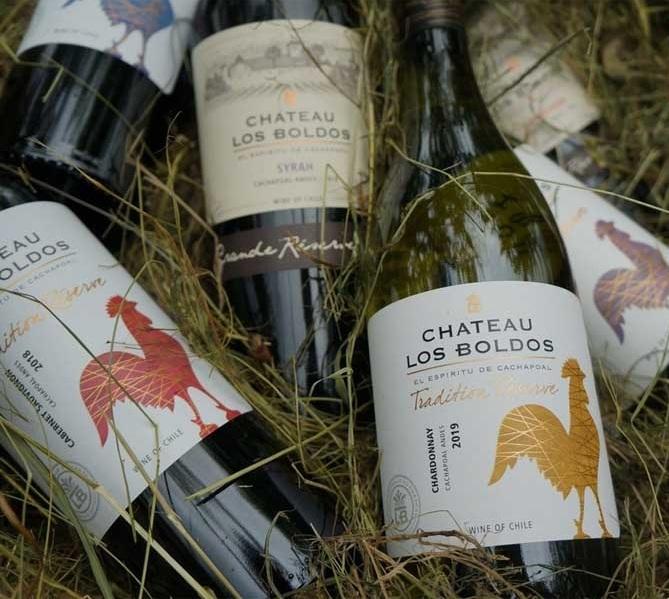 Vang Chile Château Los Boldos Tradition Reserve Chardonnay mang màu vàng tơ sóng sánh của rượu vang Chile Château Los Boldos