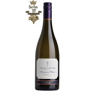 Vang New Zealand Craggy Range Te Muna Vinyard Sauvignon Blanc mang cho mình một màu vàng rơm nhạt, màu xanh lá cây