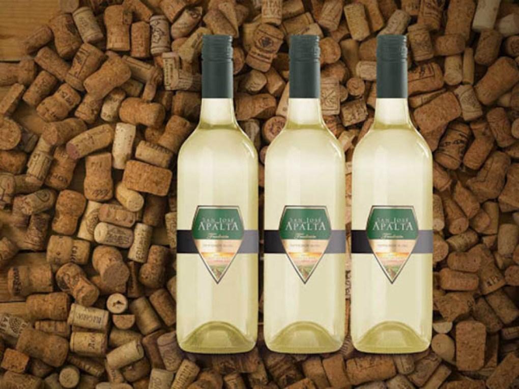 Apalta Sauvignon Blanc Ảnh Concept Sản Phẩm Từ Nhà Sản Xuất