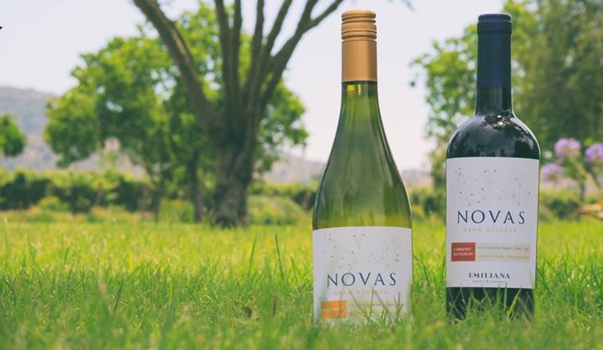 Vang Trắng Novas Gran Reserva Chardonnay Emiliana có mầu vàng. Hương thơm của trái cây dứa, mơ và hạt dẻ nướng. Vòm miệng cân bằng