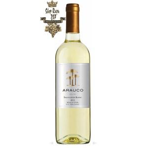 Arauco Sauvignon Blanc có mầu vàng rơm đẹp mắt. Hương thơm tươi mới của các loại trái cây nhiệt đới như anh đào, dâu tây, phúc bồn tử.