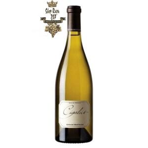 Rượu vang trắng Gerard Bertrand Cigalus Aude Hauterive IGP có mùi thơm đậm đà, đặc sắc của trái nho chín kết hợp cùng các loại trái cây nhiệt đới khác