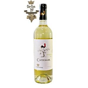 Vang Chile Trắng Cantoalba Sauvignon Blanc có mầu vàng sáng đẹp mắt. Hương thơm của hoa phức hợp cùng hoa quả nhiệt đới
