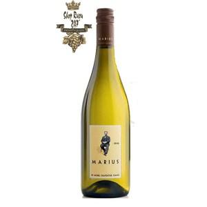 Rượu vang trắng Pháp M.Chapoutier Marius Languedoc IGP White phức hợp của nhiều gia vị như mùi quả mận chín thơm ngọt ngào mà say đắm