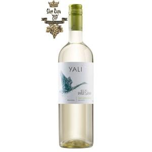 Rượu Vang Trắng Yali Wild Swan Sauvignon Blanc có mầu vàng rơm ánh xanh. Hương thơm các loại trái cây nhiệt đới và cam quýt hòa quyện