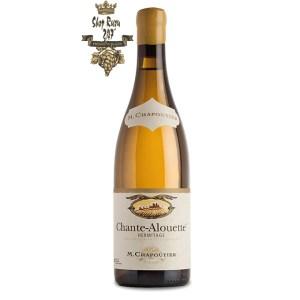 Rượu vang Pháp M.Chapoutier Chante Alouette Hermitage White Với hương vị ngọt ngào của trái cây chín và mật ong, hương thơm tinh tế của các loại hạt