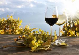 Câu chuyện về sản xuất rượu vang đã có từ nhiều thiên niên kỉ. Thế nhưng bạn có biết rằng, trong thời hiện đại trên thế giới có bốn nước sản xuất rượu vang