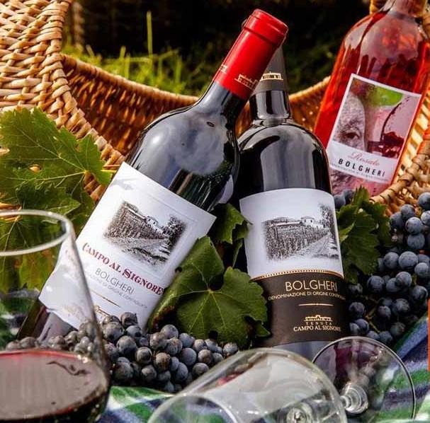 Vang Ý CAMPO AL SIGNORE BOLGHERI có màu đỏ đậm, hương vị đậm đà của các loại trái cây chín