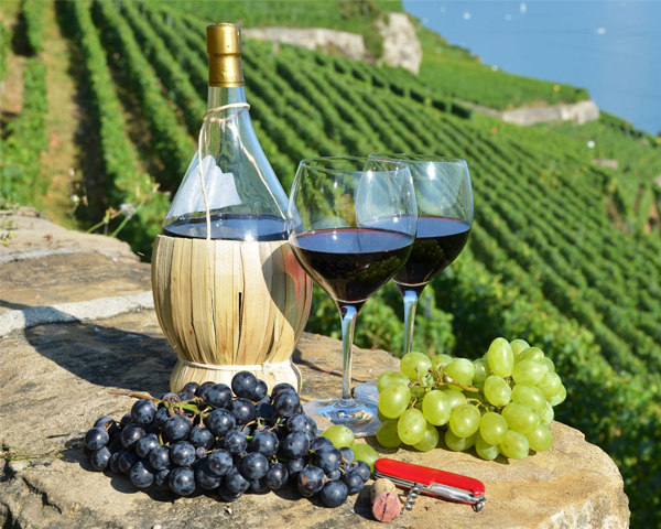 Vino Da Tavola hay còn gọi là VdT, chắc hẳn mọi người sẽ rất ít khi thấy rượu vang cấp bậc này ở Việt Nam