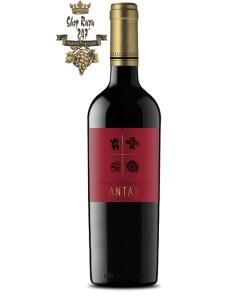 Rượu Vang ANTAI Cabernet Sauvignon 2017 mang một màu hồng ngọc sẫm. Hương thơm của rượu tràn ngập sắc thái tươi sáng của quả lý chua đen