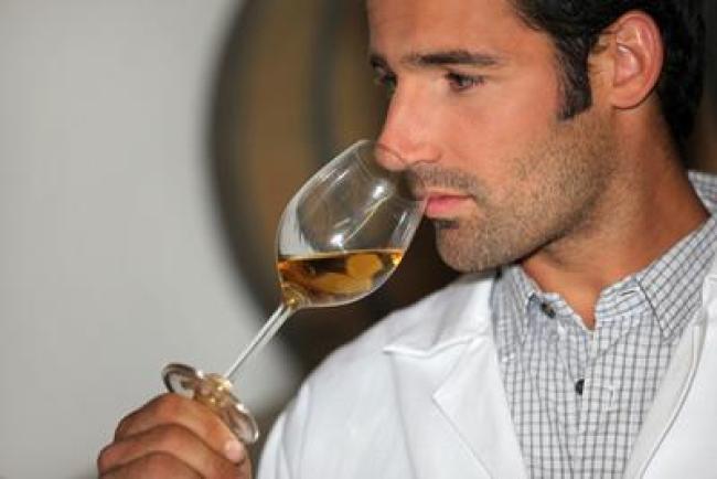 Điều thứ hai cần quan sát là mùi. Rượu hỏng có thể vì 2 lý do khác nhau. Rượu có lỗi rượu. Khoảng 1 trong 75 chai có lỗi rượu vang
