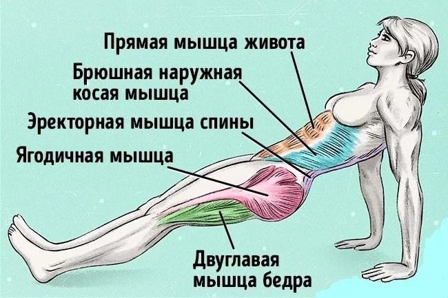 одно упражнение, чтобы сжечь жир и исправить осанку