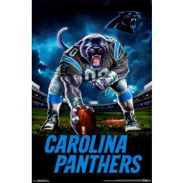 nfl carolina panthers 3 point stance 19