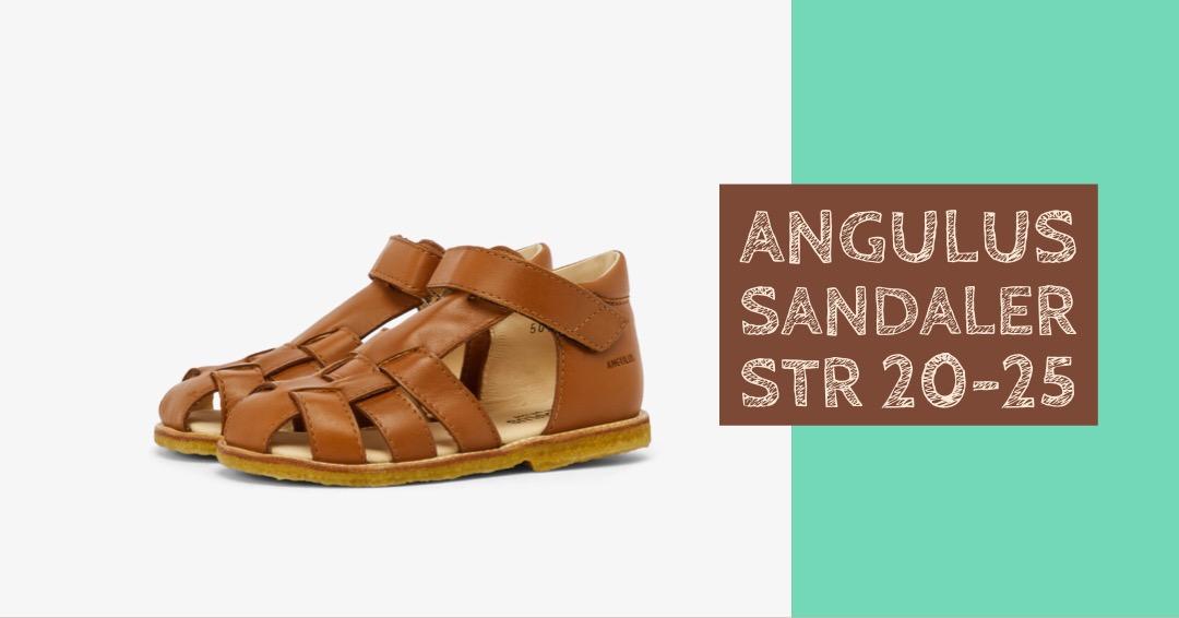 fdbe445d8736 angulus sandaler til drenge angulus sandaler til piger angulus sandaler  2019 angulus sandaler 20 angulus sandaler. Til børn