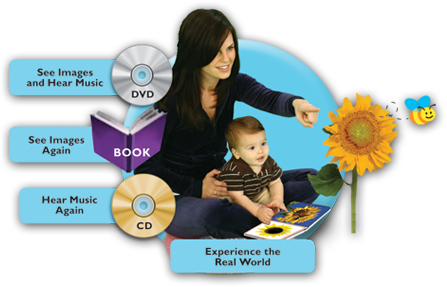 Baby Einstein Discovery Kits Review