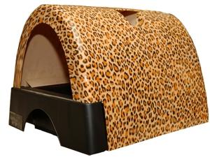 Leopard Kitty A go go