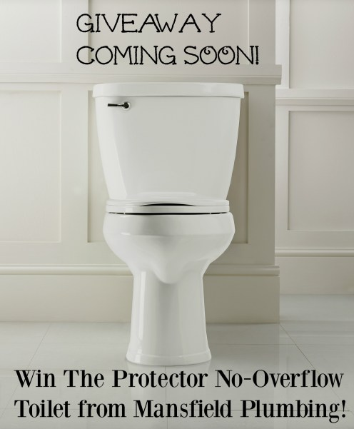 Mansfield No Overflow Toilet Giveaway