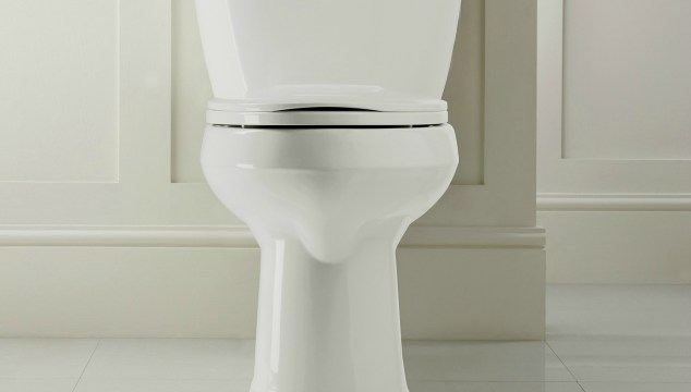 Check Out Our New Toilet From Mansfield Plumbing
