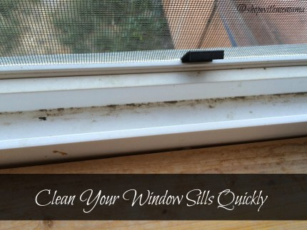 Clean Your Window Sills Quickly with Goo Gone Spray Gel Review