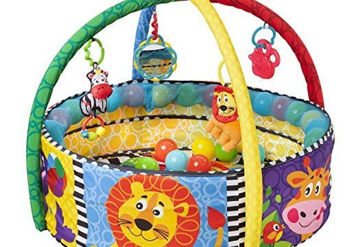 Activity Toys to Cure Baby's Cabin Fever