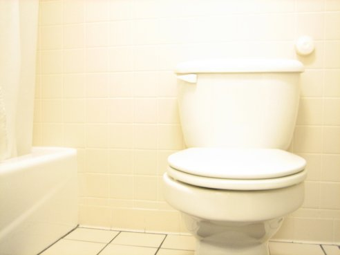Why Your Toilet Tank is Leaking