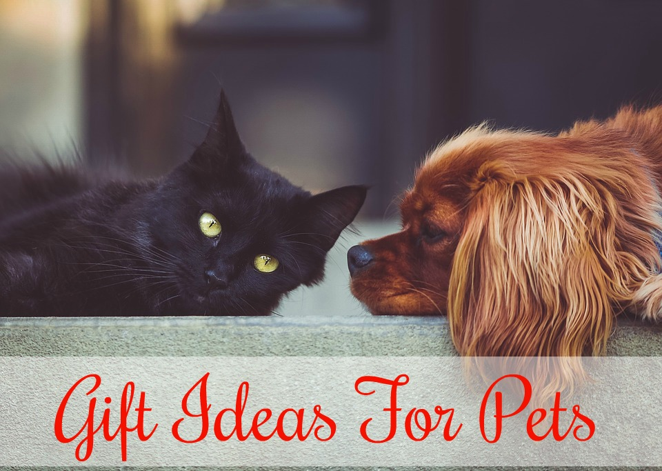 Christmas Presents For Pets