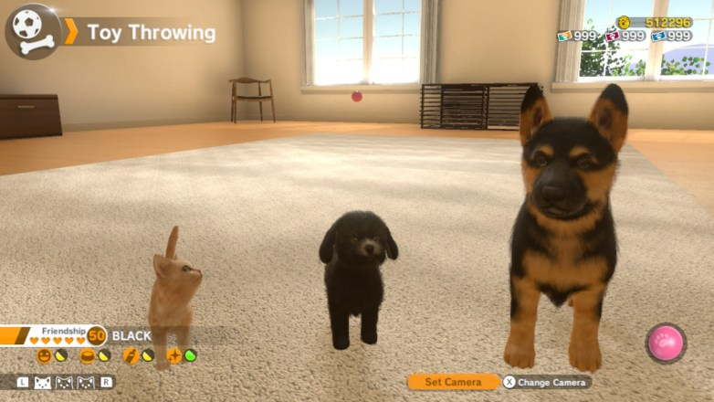 dogs and cats game